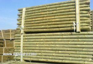 Se vende postes de madera redonda tratados en autoclave - Postes de madera tratada ...