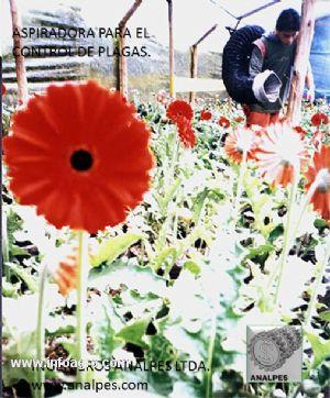 Se vende aspiradoras para el control integrado de plagas for Aspiradoras para jardin