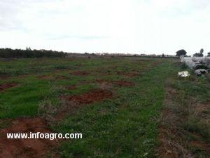 Se vende terreno de 3950m unas 4 75 hanegadas en - Precio vallar terreno ...