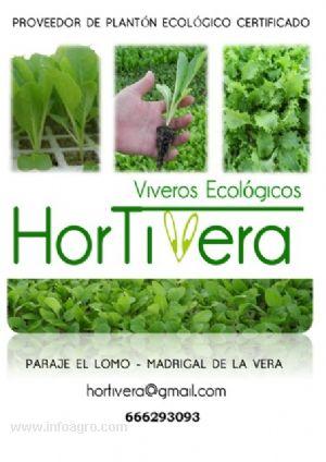 Se vende plantones horticolas ecologicos certificados for Vendo plantas ornamentales