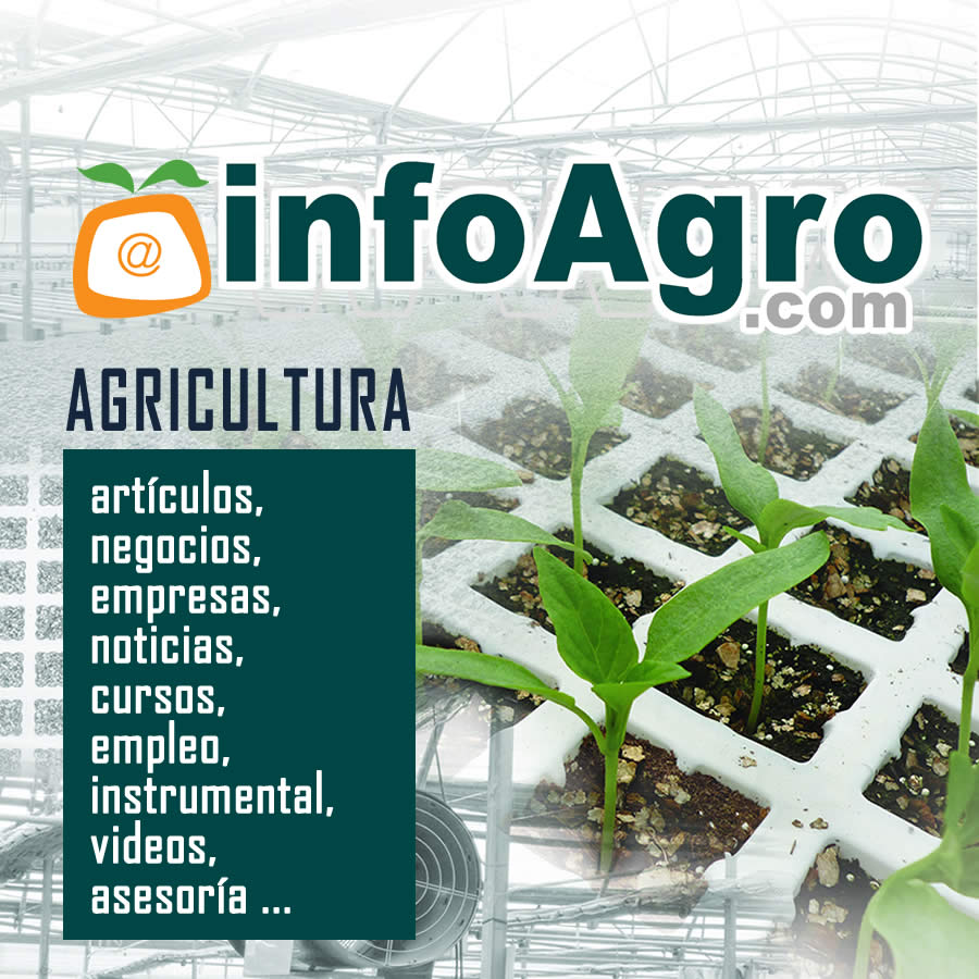 Noticias Infoagro 2013